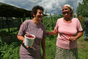 donne nei campi